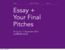 ePub written assignment and pitch details