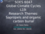L19 Research themes, Sapropels and organic carbon and burial